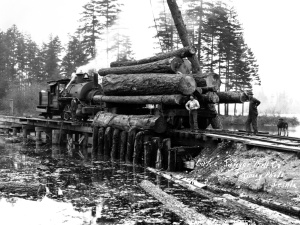 Lake Sawyer log dump, 1928. Courtesy of University of Washington Libraries, Special Collections, C. Kinsey No. 1684